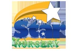 sponsor-starnursery